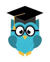 owl graduate isolated icon design