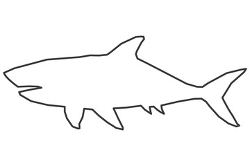 shark outline icon