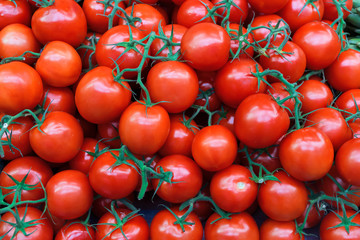 Fresh organic tomatoes as background. Close up.