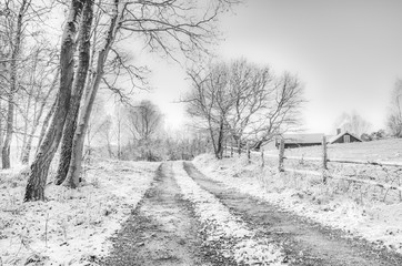 Snow covered rural scene