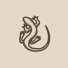 Lizard sketch icon.