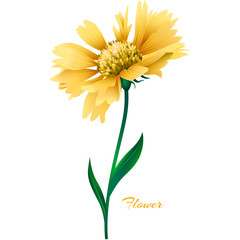 Realistic yellow vector flower.