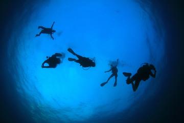 Scuba diving. Group of divers descend, silhouette