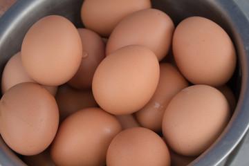 Egg, Chicken Egg.