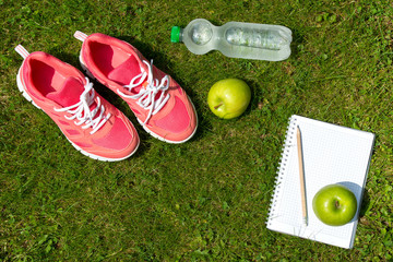 Fitness concept, pink sneakers, notebook with pencil, apples and bottle of water on green grass outdoors, top view