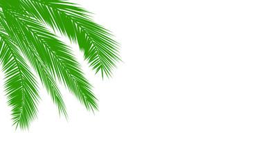 Palmen mit Textfreiraum
