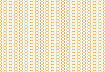 Honey bee comb background pattern.  Honeycomb seamless background. Simple texture. hive bees wax Illustration. Vector print