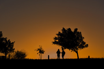 Silhouette of a couple standing under a tree during sunset