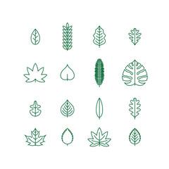 Line Leaf Icon Set