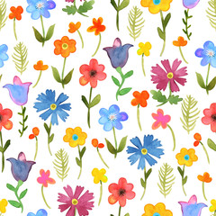Seamless floral  background. Isolated colorful field flowers and