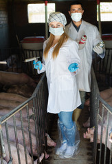 Veterinarians holding syringes and bottles
