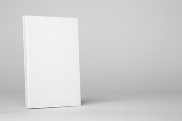 Real paperback white book on a gray background