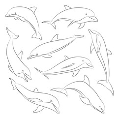 Vector hand drawn set of dolphins
