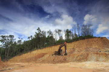 Deforestation: Excavators destroy rainforest to make way for oil palm plantations