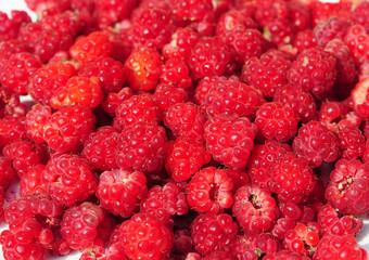 Raspberry Background. Freshly picked ripe red raspberries.