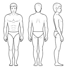 Illustration of male figure