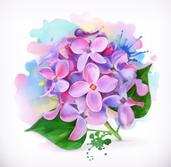Lilac flowers, watercolor painting, mesh vector