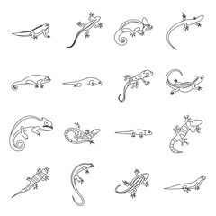 Lizard icons in outline style. Line lizards set isolated vector illustratration