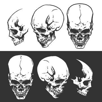 Black and white skulls