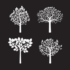 Set of White Trees.Vector Illustration.