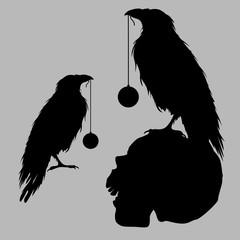 black raven bird silhouette skull