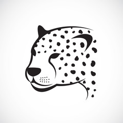 Vector image of an cheetah face on white background. Vector chee