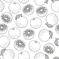 Seamless pattern with hand drawn oranges on white background