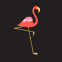 A beautiful red flamingo
