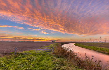 Wall Mural - Dutch river sunset in pink