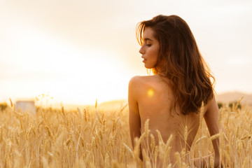 Naked brunette young girl in a orange field during the sunset
