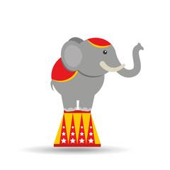 circus animal isolated icon design