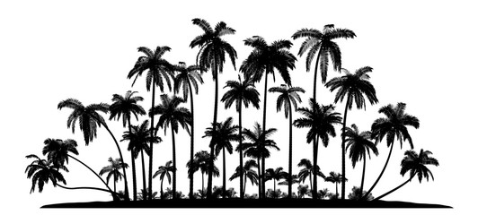Group of palms Vector Silhouettes