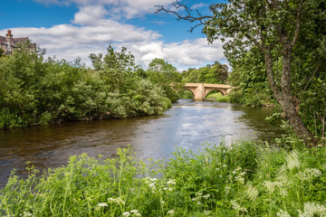 River Coquet at Rothbury, with lush summer vegetation on the riverbanks, in Northumberland