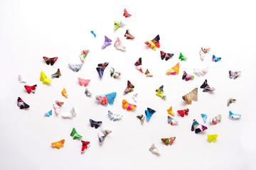 Schmetterlinge auf weiss-Papierfalter
