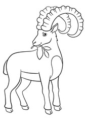 Coloring pages. Cute ibex with great horns.