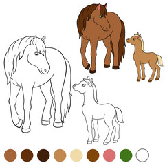 Coloring page. Color me: horse. Mother horse with foal.