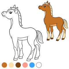 Coloring page. Color me: horse. Little cute foal.