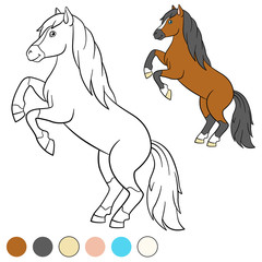 Coloring page. Color me: horse. Beautiful horse.