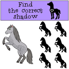 Children games: Find the correct shadow. Cute horse.