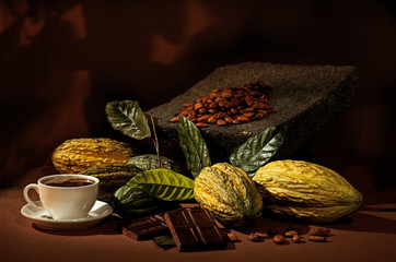 Still life of cacao (cocoa) with white cup.