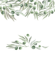 header template with olives and leaves. watercolor illustration