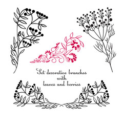 Hand drawing decorative floral elements