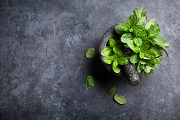 Fresh mint leaves in mortar on stone table