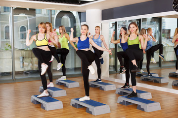Group of women, step aerobics in fitness club