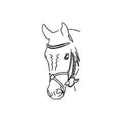 Horse icon. Black icon on white background.