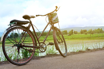 Bicycle on green field