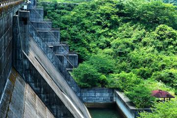 森の中のダム