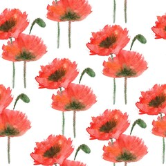 Seamless pattern with watercolor red poppy on a white background