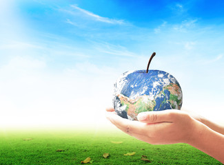 World environment day concept: Apple of earth globe in human hands. Elements of this image furnished by NASA