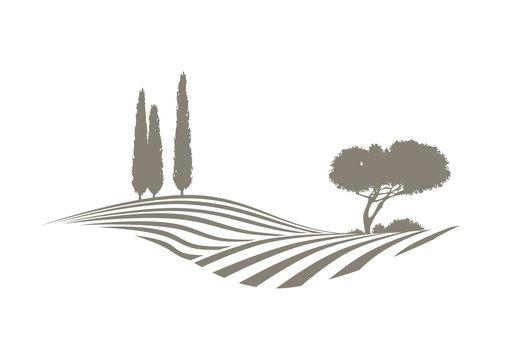 vektor landschaft mit feldern, Zypressen und Kiefer